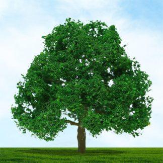 Trees 'n' Bushes